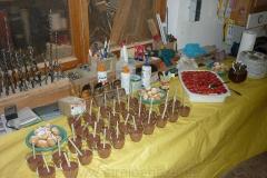 2011-06-09 Seniorenfest (4)