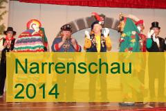 Narrenschau 2014