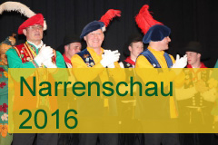 Narrenschau 2016