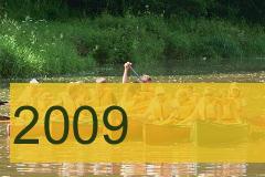 H2009